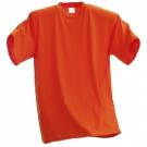 Pánské triko T160 - různé barvy